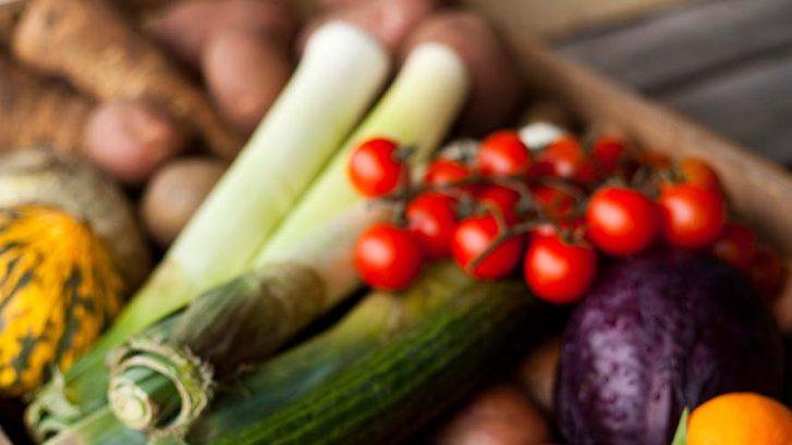 Regiodeal Foodvalley, Go! Gezond Onderweg; voeding, verspilling, Food & Businesspark