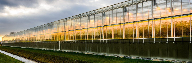 Ingredient Farm; symposium energietransitie glastuinbouw