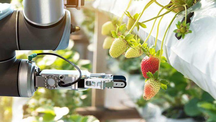 Internet of Food and Farm; IoF 2020; Roger van Hoesel