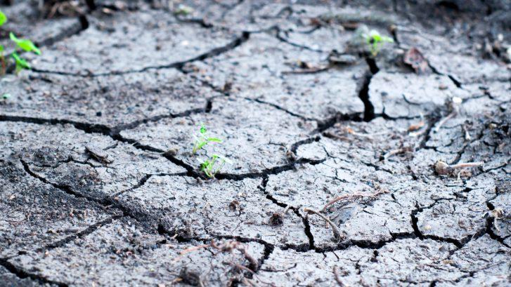 Klimaatadaptatie; Corona-OverbruggingsLening (COL)